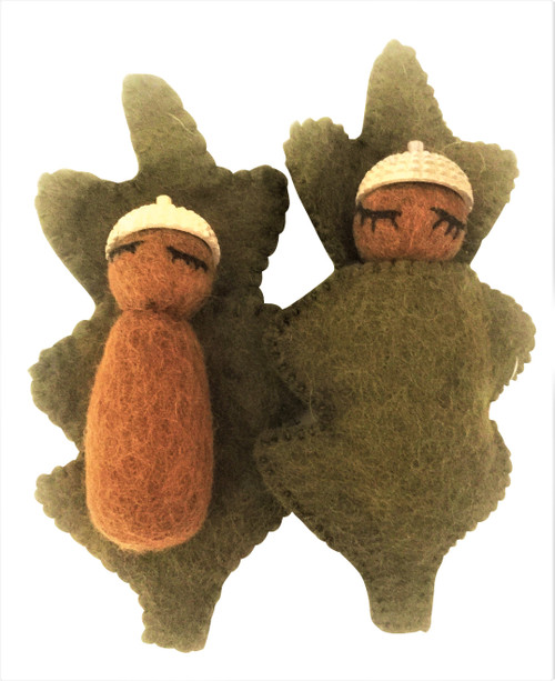 Natural Acorn Babies, sold in sets of 6 pieces.
