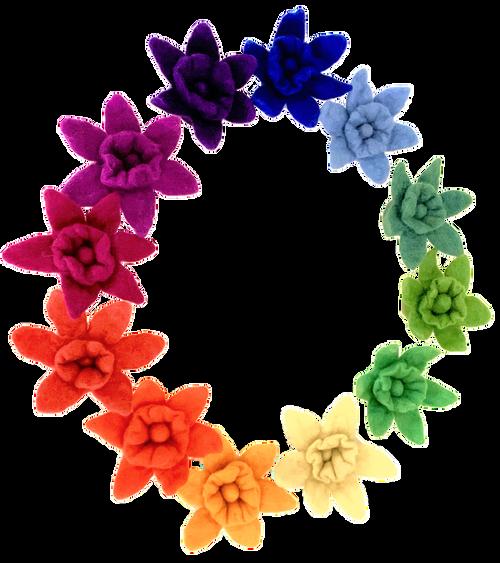 Goethe Daffodils/12pc