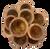 All natural wood, this set has 12 small ramekins/bowls. 4cm D x 3cm H.