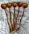 Teak Mini Ladles/6pc (5 shown) 21.5cm long by 4cm