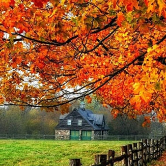 the perfect autumn