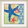 Dimensions - Starfish