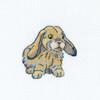 RTO - Rabbit Fanny