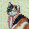 Dimensions - Mama Cat