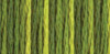 Color Variations Embroidery Floss - Amazon Moss #4066