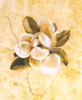 Candamar - Magnolia on Cracked Linen