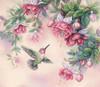 Dimensions - Hummingbird & Fuchsias