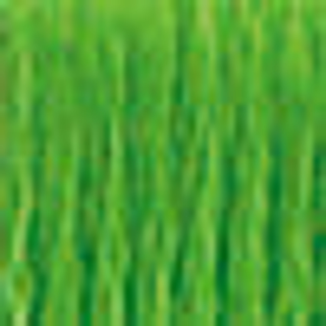 DMC # 906 Medium Parrot Green Floss / Thread