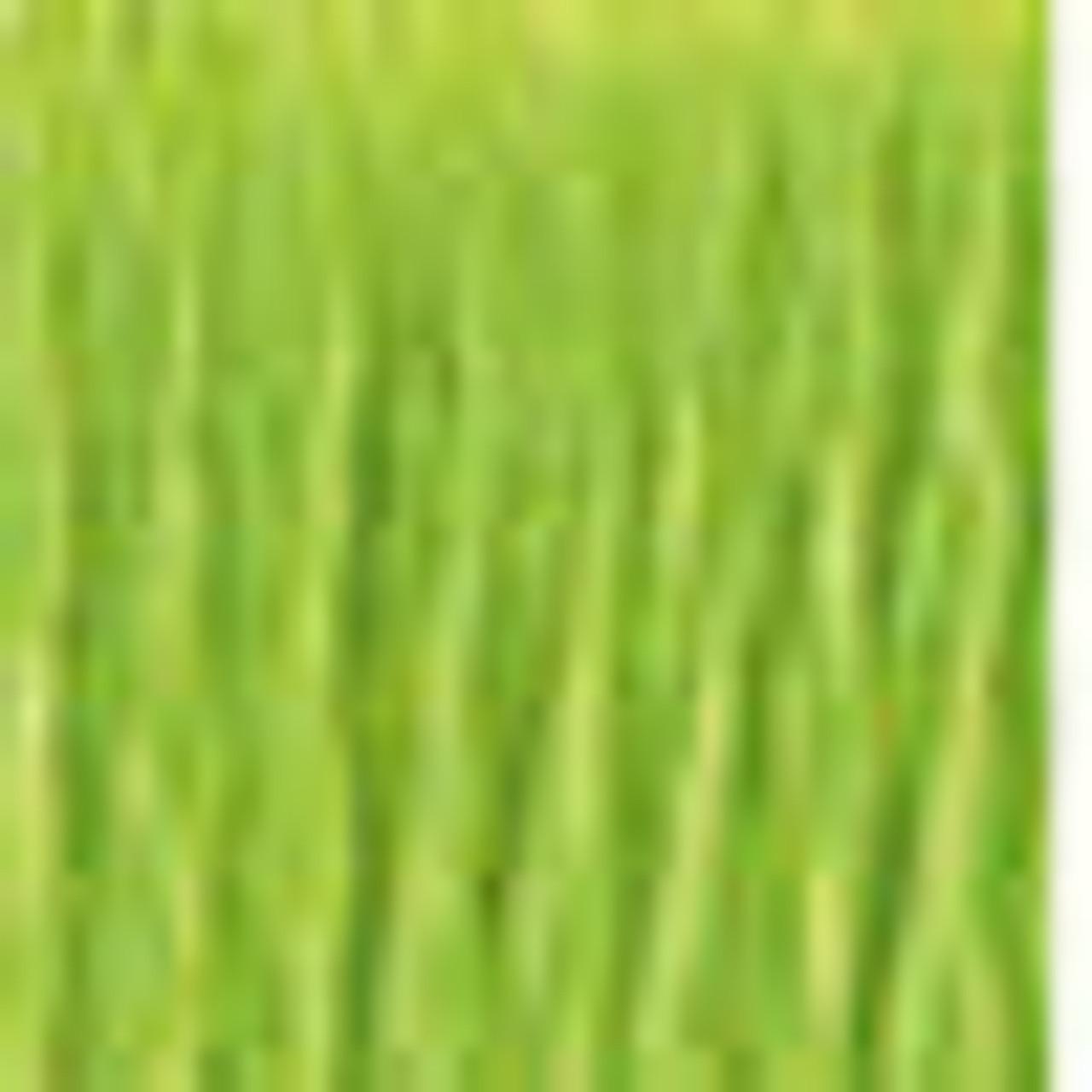 DMC # 907 Light Parrot Green Floss / Thread