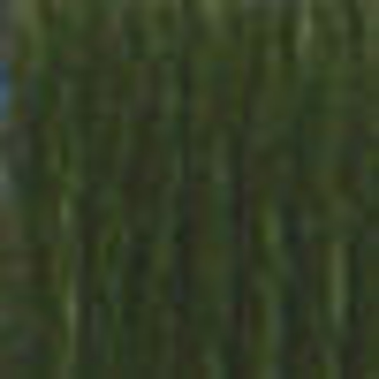 DMC # 934 Black Avocado Green Floss / Thread
