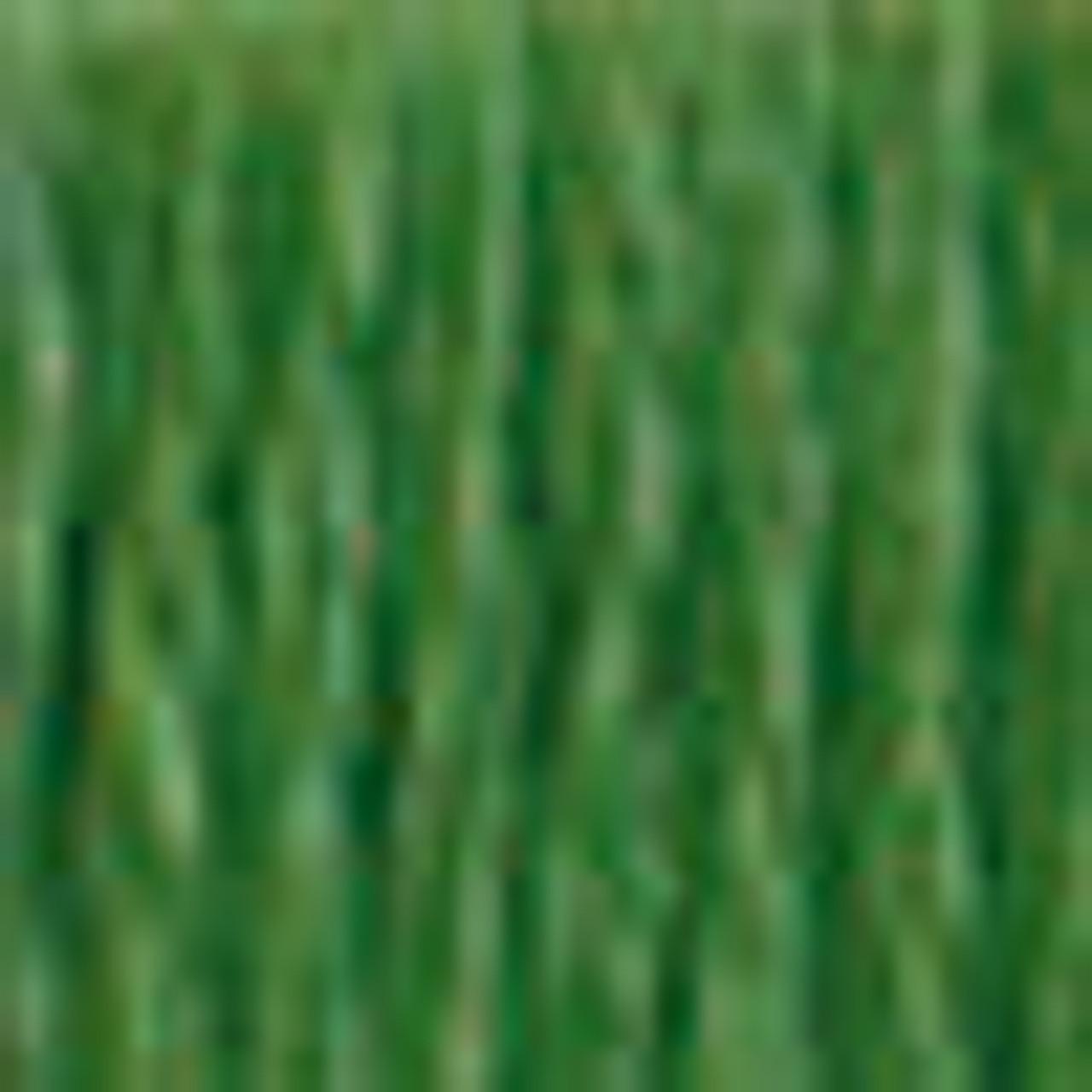 DMC # 987 Dark Forest Green Floss / Thread
