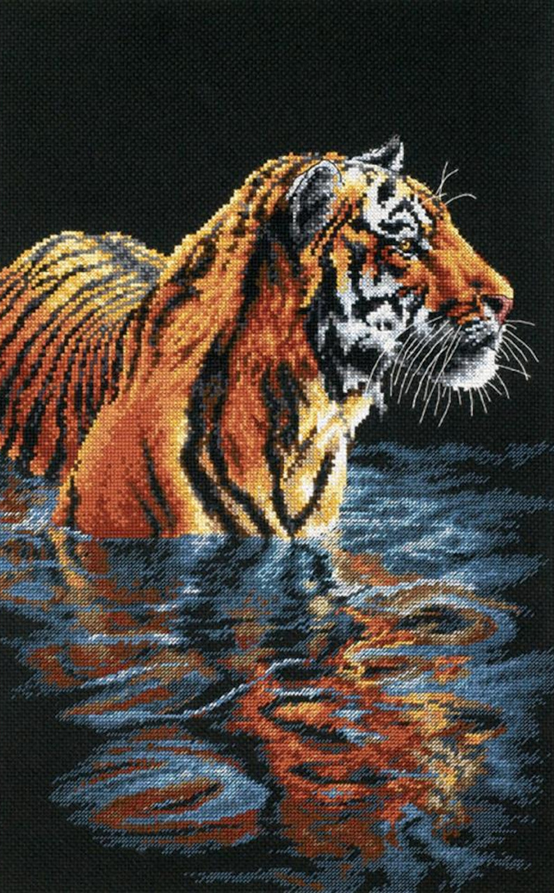 Dimensions - Tiger Chilling Out