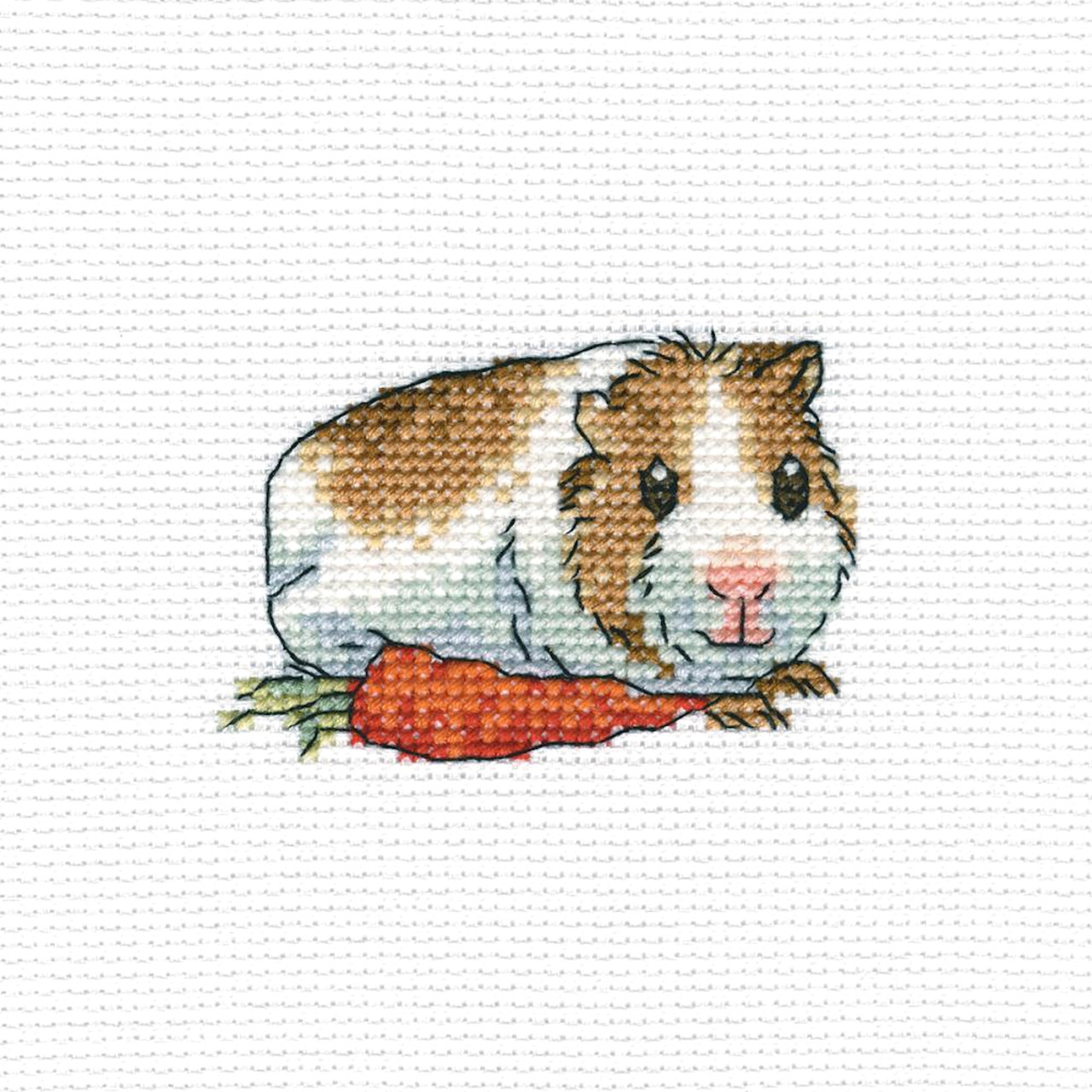 RTO - Cavy with Carrot
