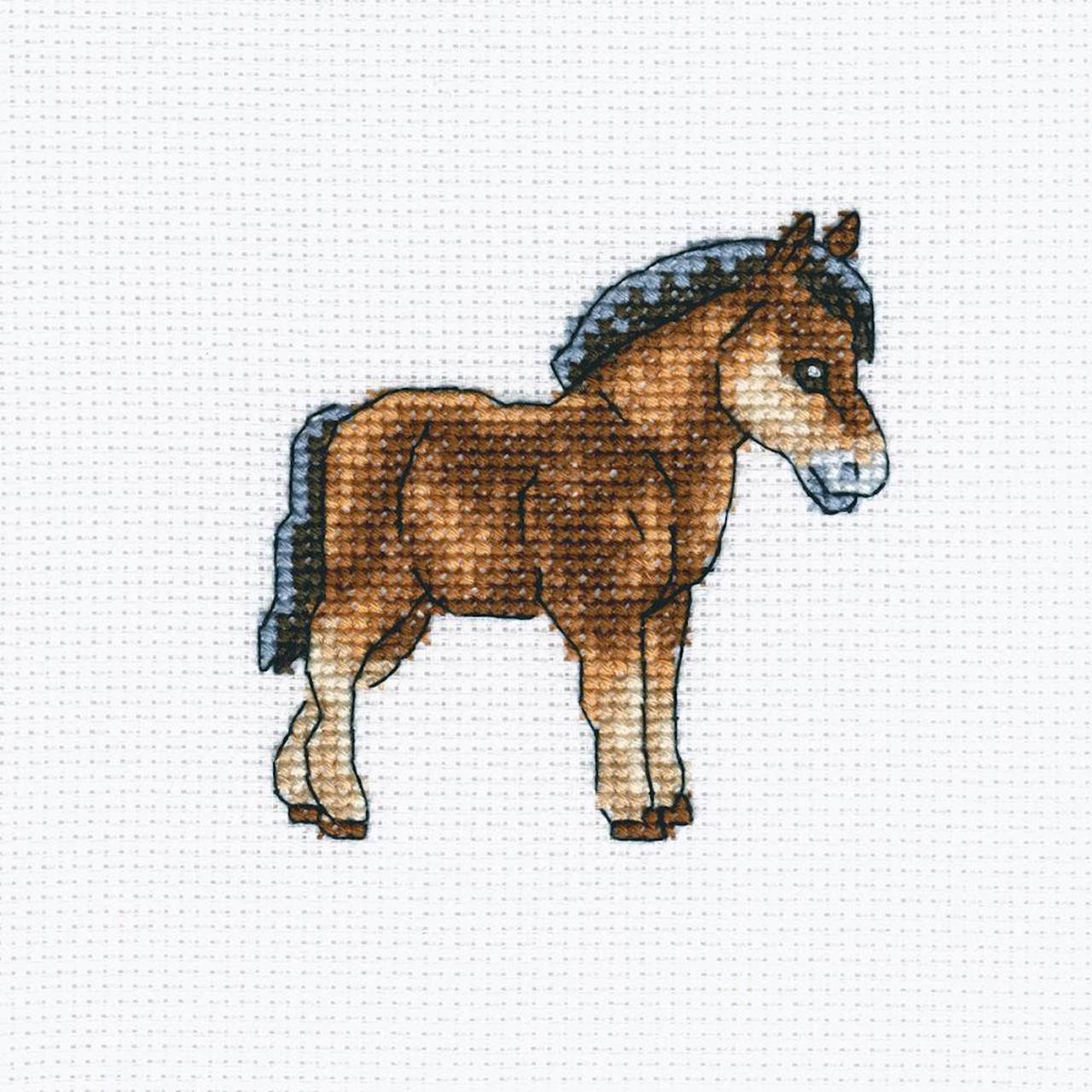 RTO - Dutch Horse
