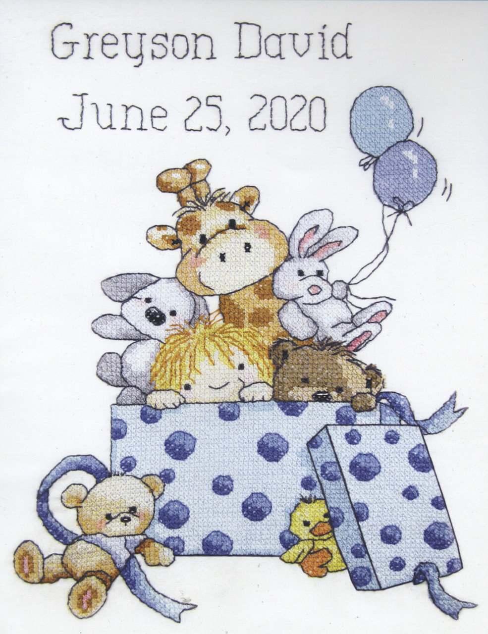 Janlynn - Toy Box Boy Birth Announcement