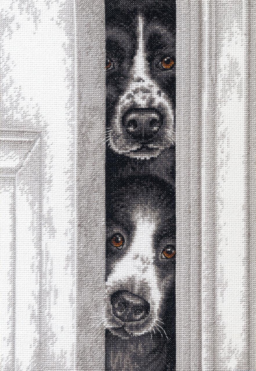 Dimensions - Peeking Pups