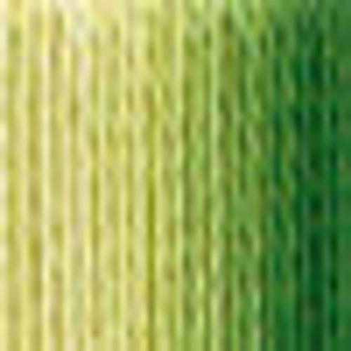 DMC # 92 Variegated Avocado Floss / Thread