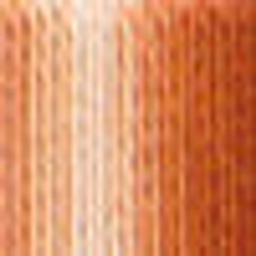 DMC # 105 Variegated Tanu/Brown  Floss / Thread