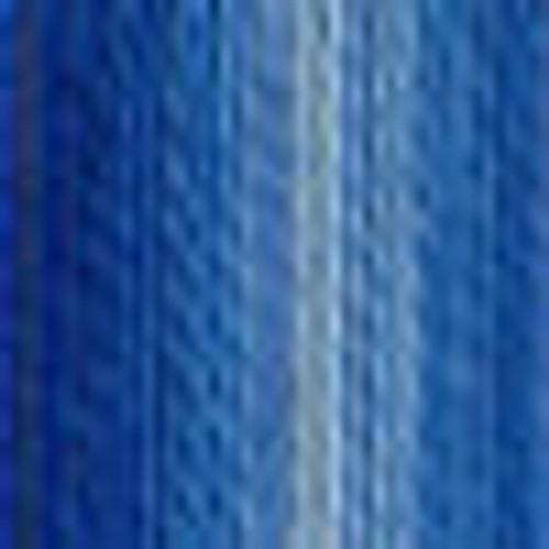 DMC # 121 Variegated Delft Blue Floss / Thread