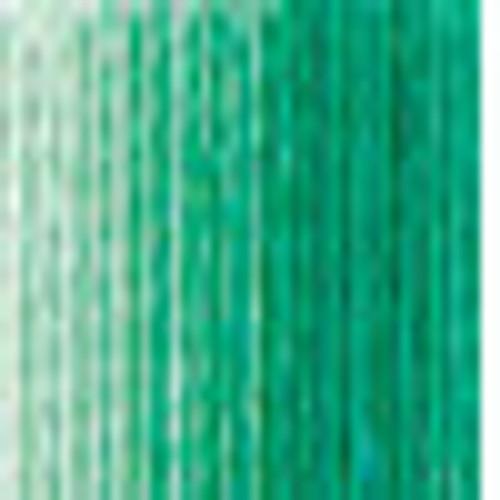 DMC # 125 Variegated Seafoam Green Floss / Thread
