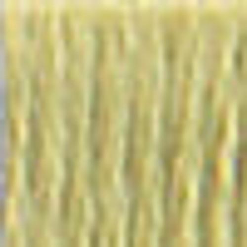 DMC # 3348 Light Yellow Green Floss / Thread