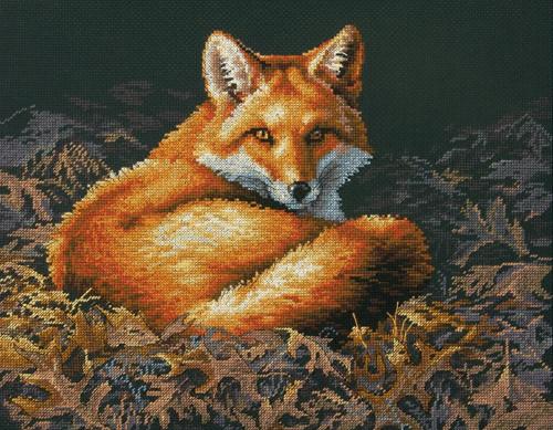 Dimensions - Sunlit Fox