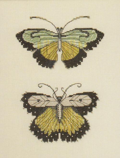 Nora Corbett - Butterflies of Meadow