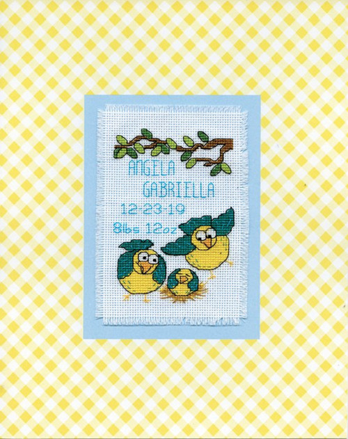 Design Works - Bird Family Birth Record Stitch & Mat