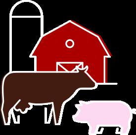 Mail Order Steaks Online - Butcherhouse Cuts