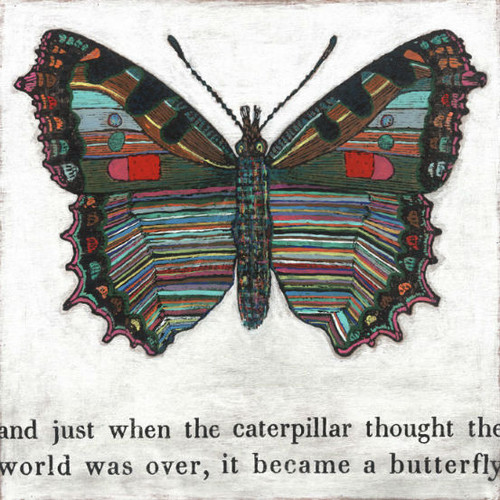 """24"""" x 24"""" Butterfly Art Print by Sugarboo Designs - Special Order"""