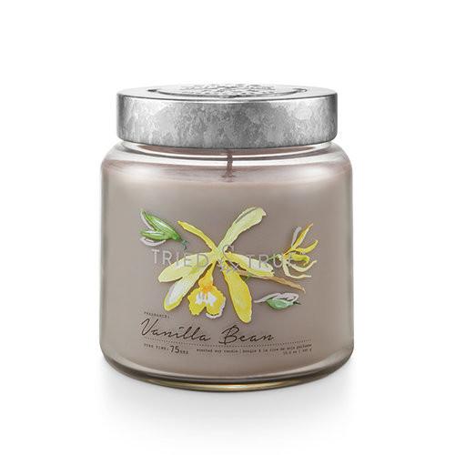 Vanilla Bean 15.5 oz. Large Jar Candle by Tried & True