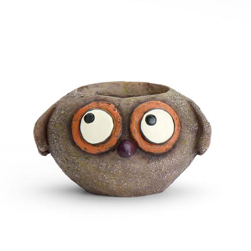 Georgetown Baby Brown Owl, Owen, Mini Planter