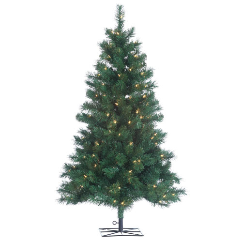 Colorado 4 ft. Spruce by Sterling Tree