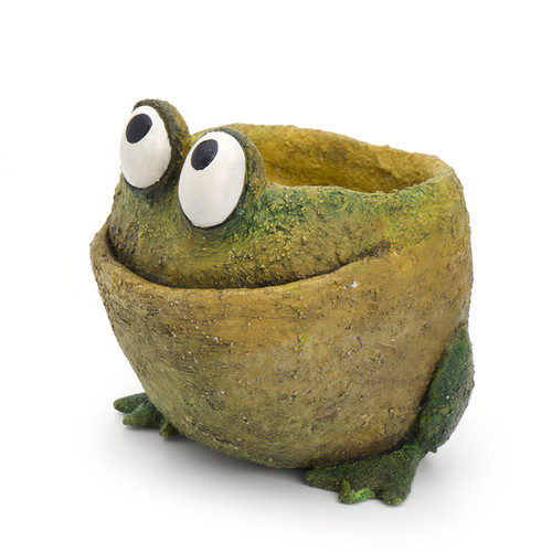Georgetown Fred the Frog Planter