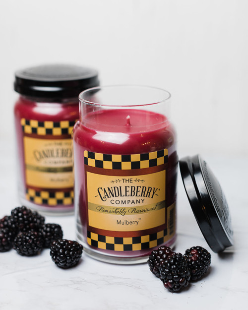 Mulberry 26 oz. Large Jar Candle 2-Pack by Candleberry Candle