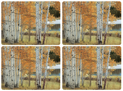 Set of 4 Birch Beauty Placemats by Pimpernel - Special Order