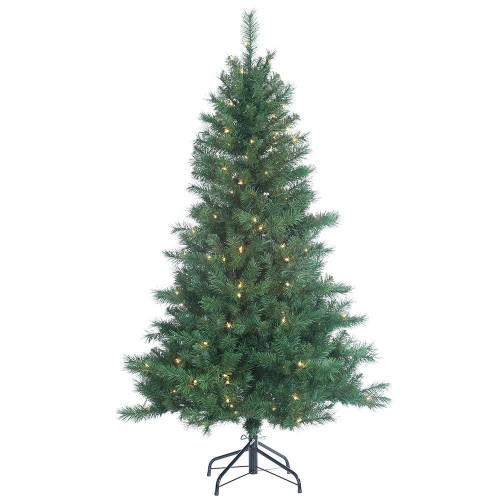Colorado 5 ft. Spruce by Sterling Tree
