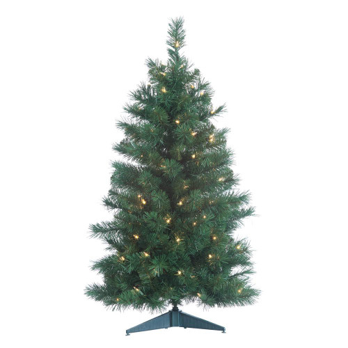 Colorado 3 ft. Spruce by Sterling Tree