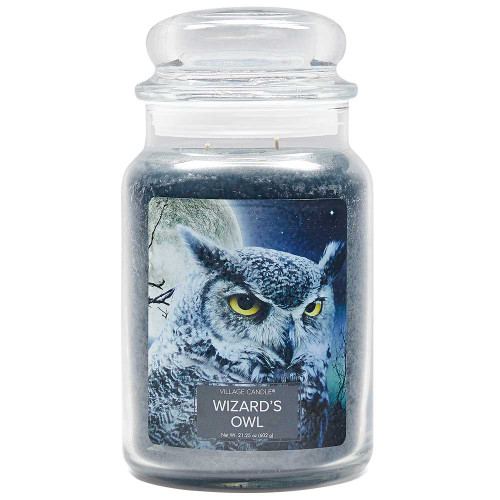 Wizard's Owl Large Glass Dome Jar Candle by Village Candle