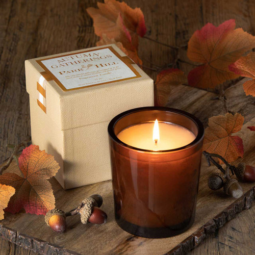 Autumn Gatherings - Amber Glass with Gift Box by Park Hill Collection