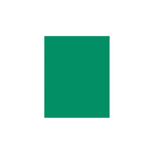 Hunter Green Solid Tissue Paper by Design Design