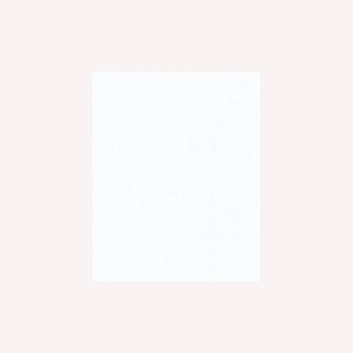 White Sparkle Tissue Paper by Design Design