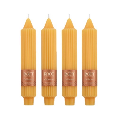 Butterscotch 7-Inch Grecian Collenette 4-Pack by Root