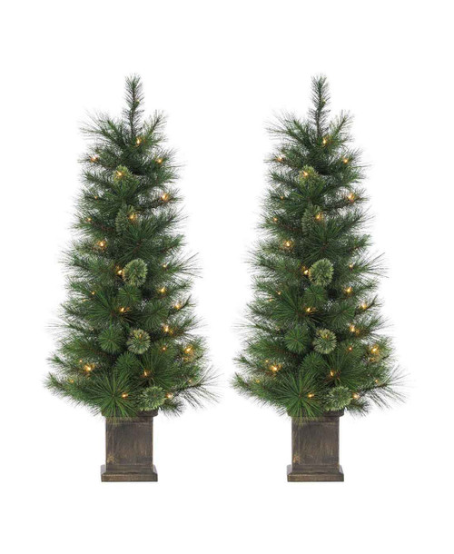 Set of 2 Potted Hard Needle 4 ft. Cashmere by Sterling Tree