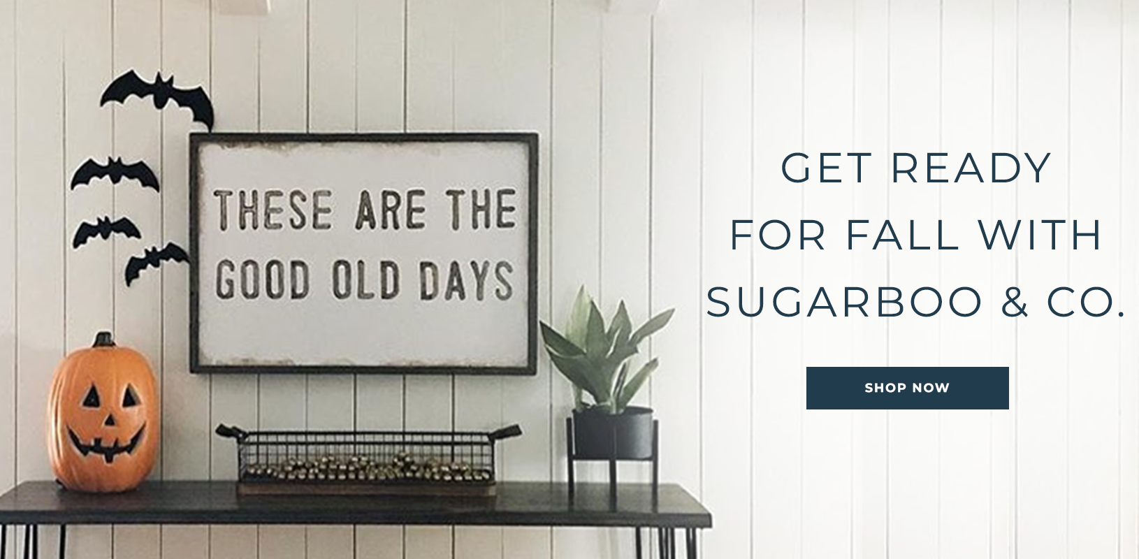 Get Ready for Fall with Sugarboo and Co
