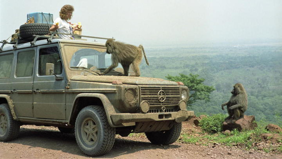 Couple's Extraordinary 550,000-Mile Road Trip Across 177 Countries Over 26 Years