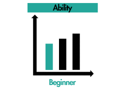 ability-beginner.png