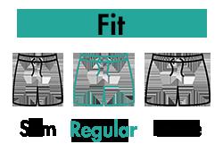bs-fit-regular.png