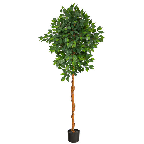 6' Ficus Tree, artificial