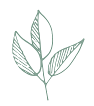 n-a-plant-small.png